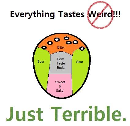 Palette taste buds